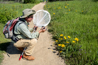 Photographing Mule Ears