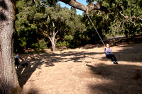 Swing in Mader Valley (2011)