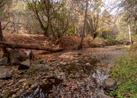 San Francisquito Creek