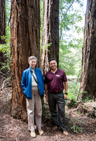Helen Quinn and Diego Roman in the Redwoods
