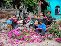 Family Prepares Flowers for Holy Week Procession, Lake Atitlan, Guatemala, 2006
